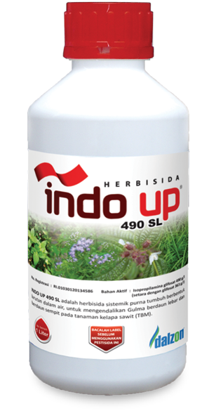 indo-up