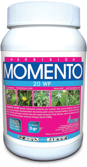 momento-20