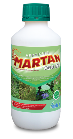 MARTAN